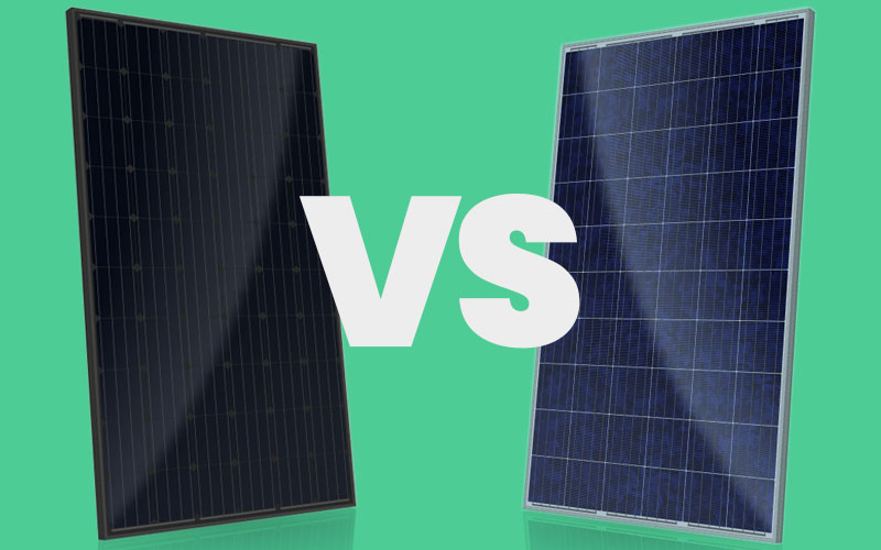 Black or blue solar panels: Which is better for you?(图1)